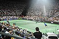 Roger Federer and Juan Martin del Potro (8367911564).jpg