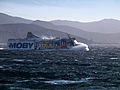 Rogliano-Moby Wonder 1.jpg