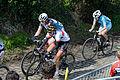 Ronde van Vlaanderen 2015 - Oude Kwaremont (17053301932).jpg
