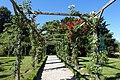 Rose garden @ Parc de Bagatelle @ Paris (28303850441).jpg