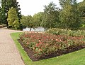 Rose garden and lake, Queen Mary's Garden - geograph.org.uk - 921156.jpg