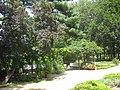 Rosengarten Forst, Laube am historischen Haupteingang, Sommer, 03.jpg