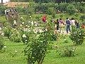 Roseto-di-roma-capitale---sito-di--il-cimitero-ebraico--dal-1645-fino-al-1934 9005796993 o 33.jpg