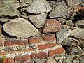 "Ruinele mănăstirii ""Sf. Treime"" - Vişina-Img-4.jpg"