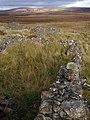 Ruins of Ryluachrach - geograph.org.uk - 1011623.jpg