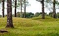Runnevåls Gravfält (1).jpg