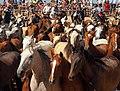 Saca de las Yeguas (14564390216).jpg