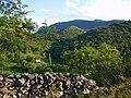 Saint-Girons - Parrat depuis le Sarrach (1).jpg
