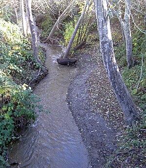 Salmon Creek (Sonoma County, California) - Salmon Creek near Freestone, California