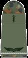 SanL 004-Flieger-SanOA-(Humanmedizin).png