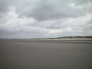 West Wittering - Image: Sand dunes at East Head