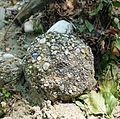 Sand stone ball.jpg