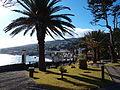 Santa Cruz, Madeira park 2.JPG