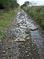 Sarn Helen Roman Road, Hirfynydd - geograph.org.uk - 963789.jpg