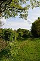 Schleswig-Holstein, Quickborn, Geotop Ka 006 NIK 3824.jpg