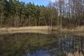 Schlitz Rohrwiesenbachtal und Eisenberg bei Schlitz NR 165214 Pond Winter.png