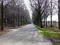 Schloss Rheydt-1.jpg