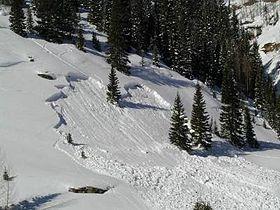 Schneebrett.jpg