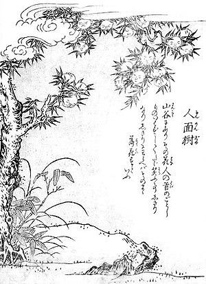 Konjaku Hyakki Shūi - Image: Sekien Ninmenju