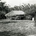 Seminole-built chickee on Koreshan Unity grounds in Estero, Florida (11419074124).jpg