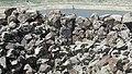 Sevaberd Fortress ruins (103).jpg