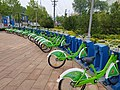 Sharedbikes in Gangcheng.jpg