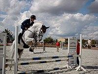 Show Jumping, an equestrian sport.
