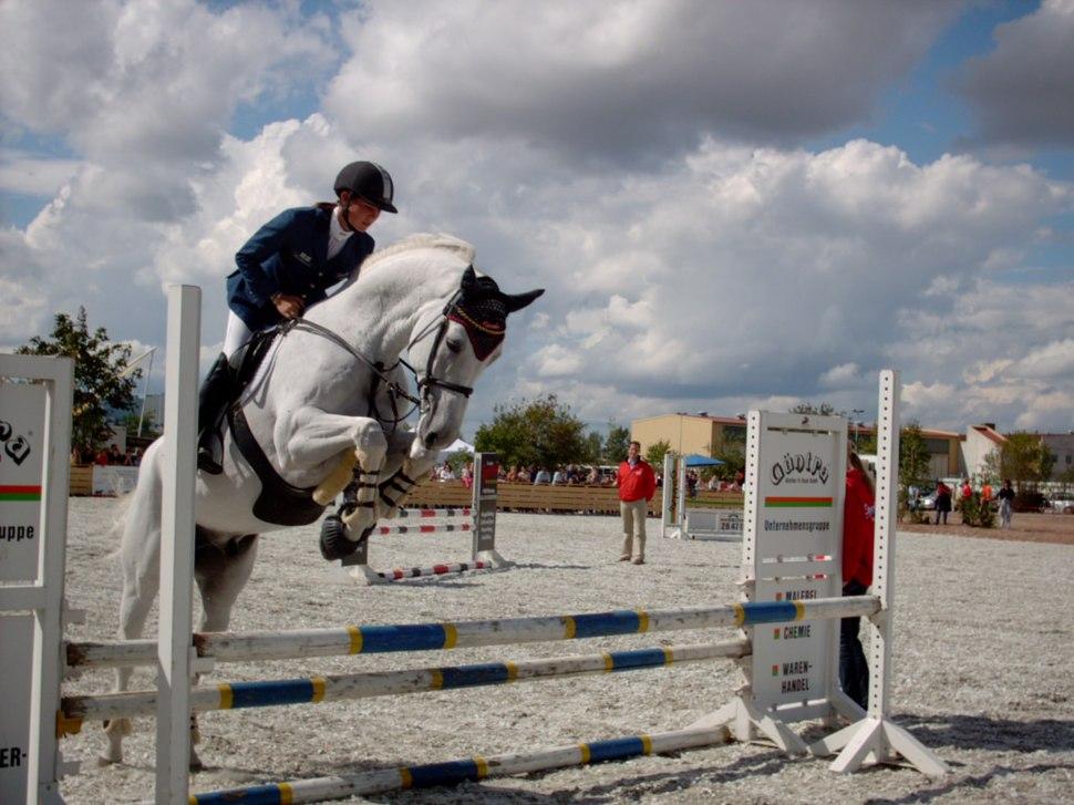 Showjumping white horse