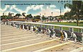 Shuffleboards courts and bowling greens, Lakeland, Florida.jpg