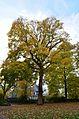 Siegen - panoramio (14).jpg