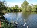 Singleton Lake - geograph.org.uk - 1279176.jpg