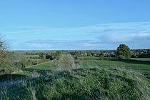 Site de Belleperche 1.jpg