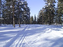 Photograph of a groomed, snow-covered cross-country ski trail