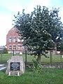 Skorzewo, monument (2).jpg