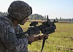Sky Soldiers and Iron Wolves train together on M320 range 140918-Z-PU354-043.jpg