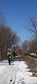 Snow minuteman bike path arlington massachusetts 050322.jpg