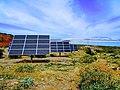 Solar Panels - panoramio (1).jpg