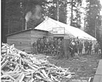 Spruce Division soldiers outside large tents with sign reading Knights of Columbus Headquarters, Everybody Welcome, Camp F, ca (KINSEY 777).jpeg