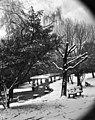 St David's Park - Hobart under snow circa 1951-1973 (15375885916).jpg