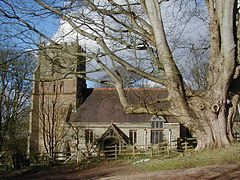 St Leonards Church, Beoley.jpg