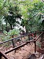 Stairs to Kayangan Lake, Coron island, Palawan, Philippines - panoramio.jpg