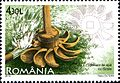 Stamps of Romania, 2010-77.jpg