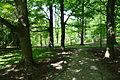 Stanley M. Rowe Arboretum - DSC03431.JPG