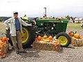 Starr-111004-0564-Cucurbita pepo-habit and pumpkin and tractor display with Kim-Kula Country Farms-Maui (25025073221).jpg