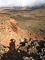 Starr-171002-0409-Pellaea ternifolia-with Kim ascending-Kalua o ka Oo Haleakala National Park-Maui (38761655602).jpg