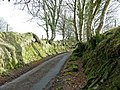 Steep-sided lane - geograph.org.uk - 689734.jpg