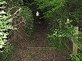 Steps to footbridge over M20 - geograph.org.uk - 1292674.jpg