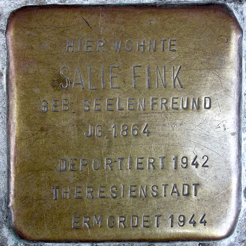 Salie Fink