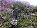 Stone houses in Gilgit.jpg