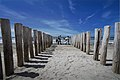 Strandwanderung (35012088720).jpg